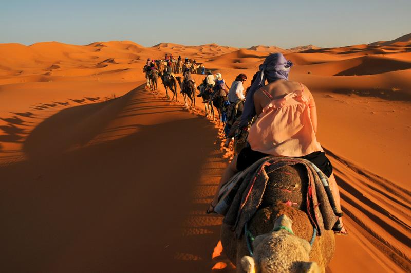 Camel Trek 2 Night in Desert Sahara