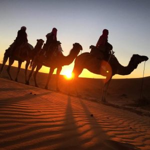2 Days Trip From Marrakech To Zagora | Morocco Private Tours